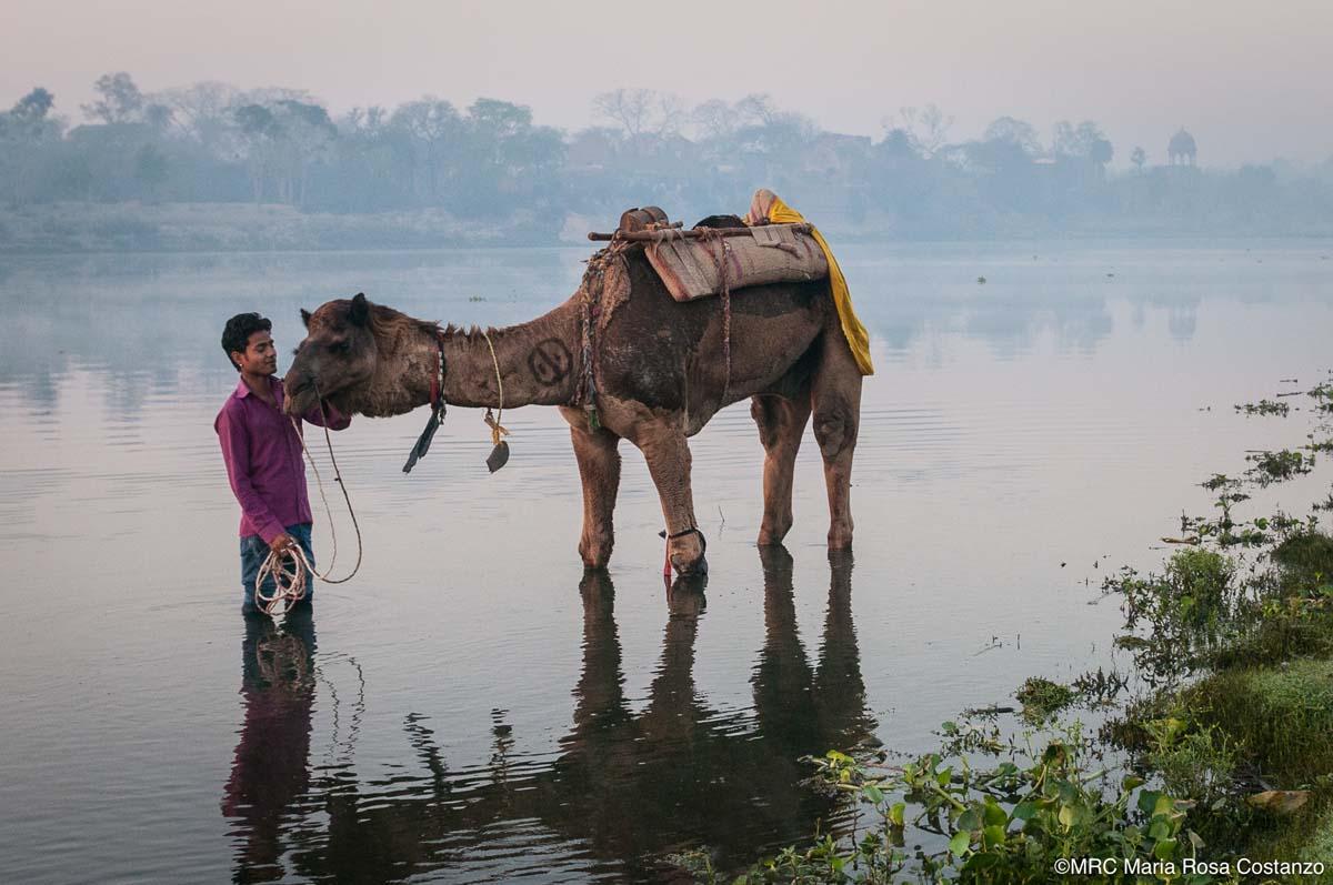 India-13-MRC-160324-0028