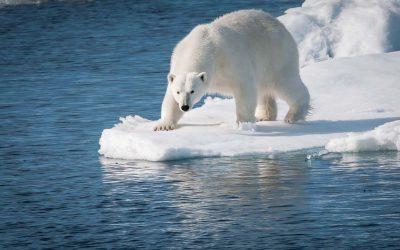 Svalbard Arctic Archipelago